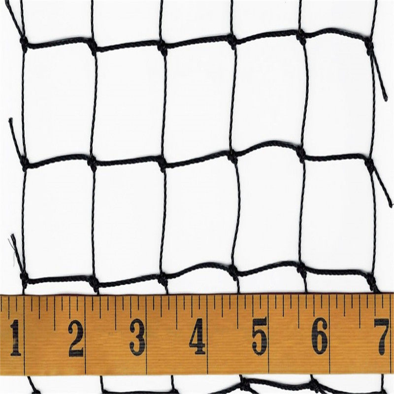 Square Mesh Bird Netting For Plants , 20gsm - 120gsm Bird Netting For Buildings